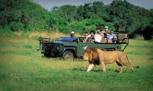 گردشگری در قاره آفریقا